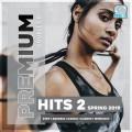 Premium Hits 2